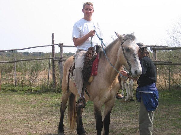 mas-horse