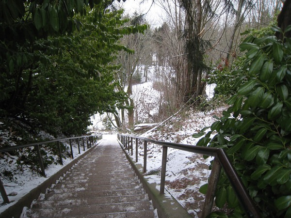 queen-anne-stairs-snow
