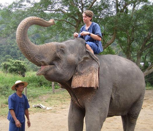 elephant-training-mas