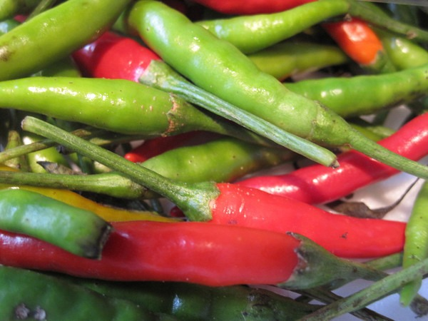 thai-peppers