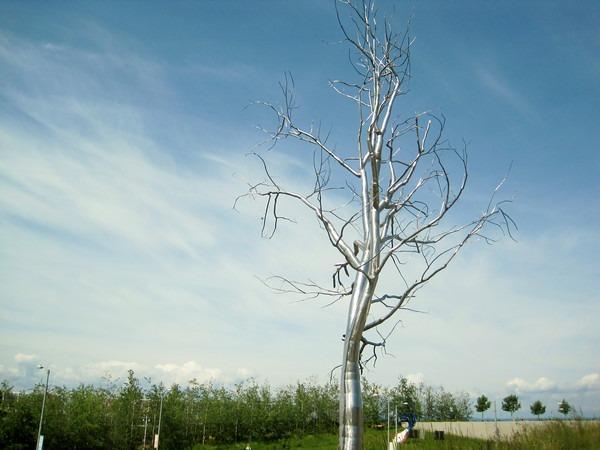 sculpture-park-tree