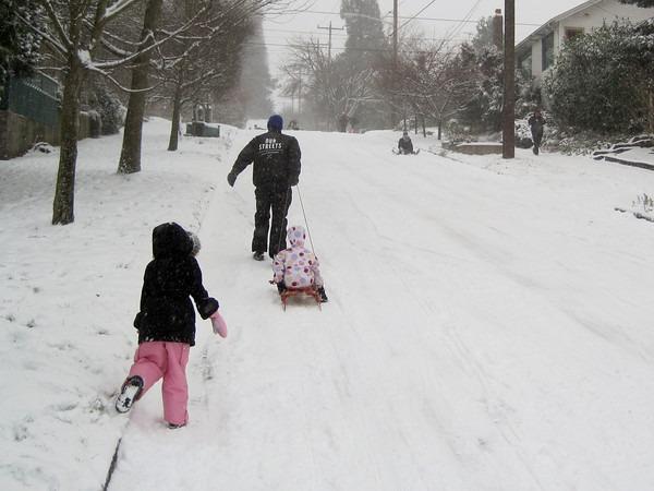 family sled