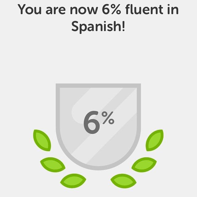 Duolingo 6%